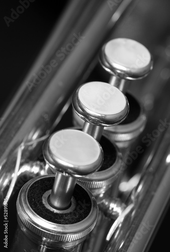 Trumpet Valves closeup