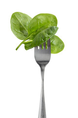 Baby spinach leaves on a fork