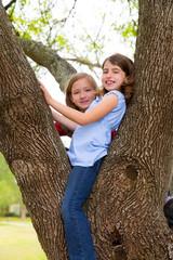 children girls playing climbing to a tree park