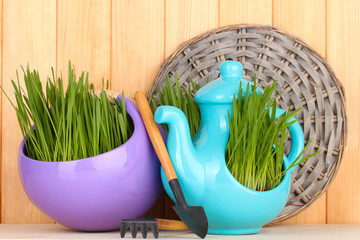 Green grass in decorative pot on wooden background