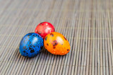 Colorful quail eggs