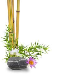 bambou, fleurs de lotus sur galet zen