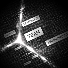TEAM. Word cloud concept illustration.