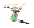 Coins and house key ring