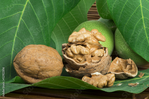 Green and ripe walnuts. Studio shot