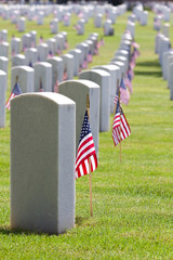 Cemetery Memorial Day