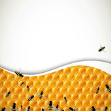 Vector Natural Background with Honeycombs and Bees