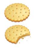 two crispy cookies isolated on white background - eps10 vector