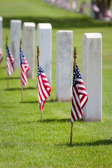 Memorial Day Cemetery
