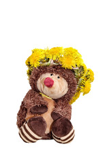hedgehog in a wreath of dandelions