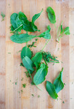 green leafs sorre, spinach on the wood board