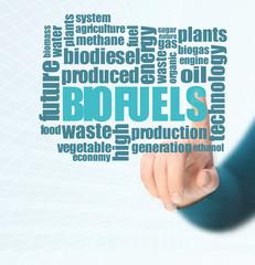 Biofuels or Biofuel