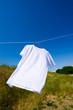 爽やかな青空と真っ白いTシャツ