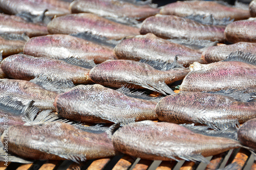 Dried fish on the bamboo grid in the sunny day