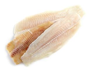 various fresh raw fish fillet
