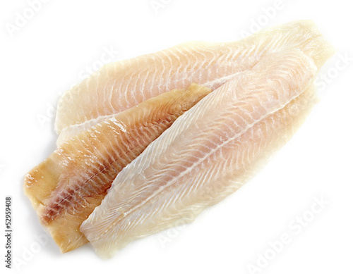 various fresh raw fish fillet