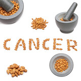 Seeds of apricot natural cure for cancer