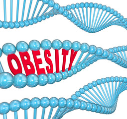 Obesity Word DNA Strand Medical Research Fat Hereditary