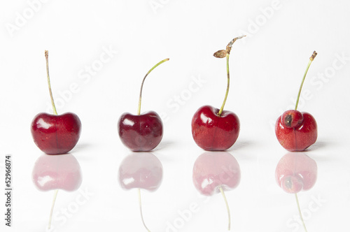 Be different! Cherries on White Background. One is...male