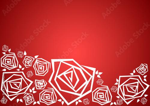białe róże na czerwonym tle