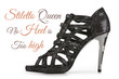 Sexy female stiletto shoe isolated on white with sample text