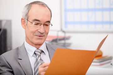 Older businessman writing in a file