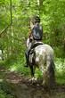 Obrazy na płótnie, fototapety, zdjęcia, fotoobrazy drukowane : Riding through the forestry
