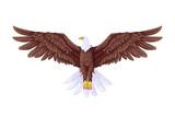 Flying Eagle - 52985243