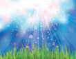 Vector of sunshine sky background  and green grass.