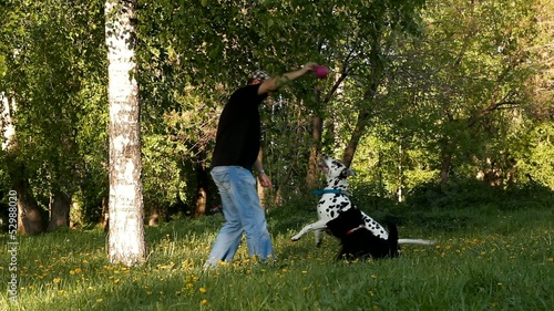 man playing ball in the park with dalmatian