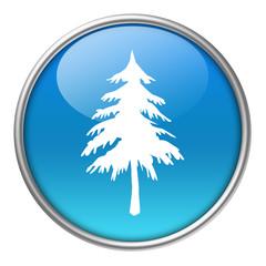 Bottone vetro albero