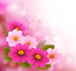 Holiday background with three pink flowers.Vector illustration