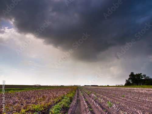 Harvested Field under Summer Storm