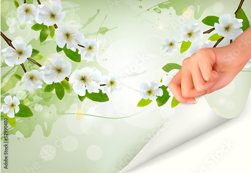 Nature background with blossoming branch.