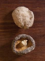 Shitake Mushrooms on wood
