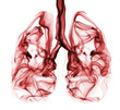 Smoke formation shaped as lungs. Illustration of cancer - 52993431