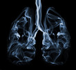 Smoke formation shaped as lungs. Illustration of cancer - 52993462