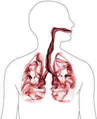Smoke formation shaped as lungs. Illustration of cancer