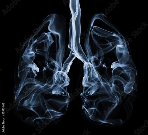 Leinwandbild Motiv Smoke formation shaped as lungs. Illustration of cancer