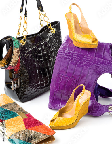 Snake leather fashion accesories still life composition