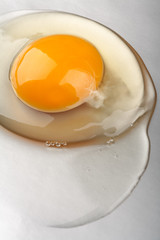 Organic egg yolk closeup