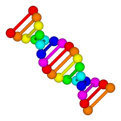 Rainbow DNA logo - deoxyribonucleic acid on white background