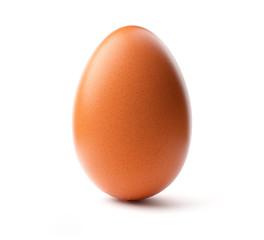 Brown egg. Studio shot