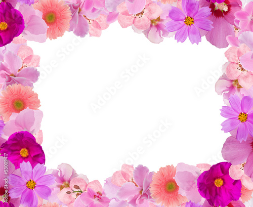 decoration from pink flowers frame isolated on white