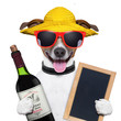 summer dog and wine bottle