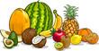 tropical fruits cartoon illustration