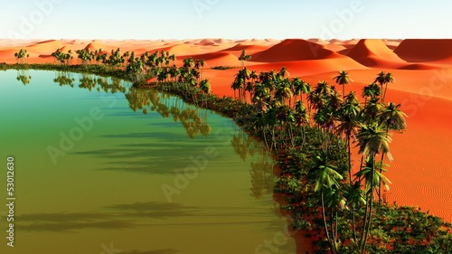 canvas print picture Beautiful natural background - African oasis