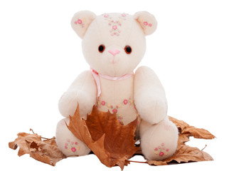 Fall or autumn teddy bear sitting on deciduous leaves