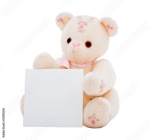 Teddy bear with a blank card