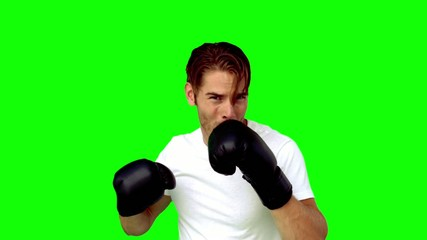 Sportsman boxing in front of the camera